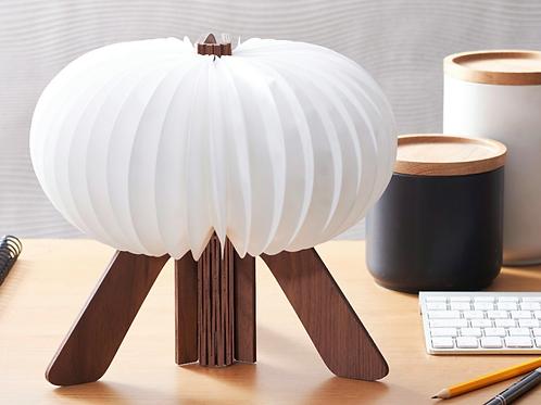 Gingko R Space lamp in walnut