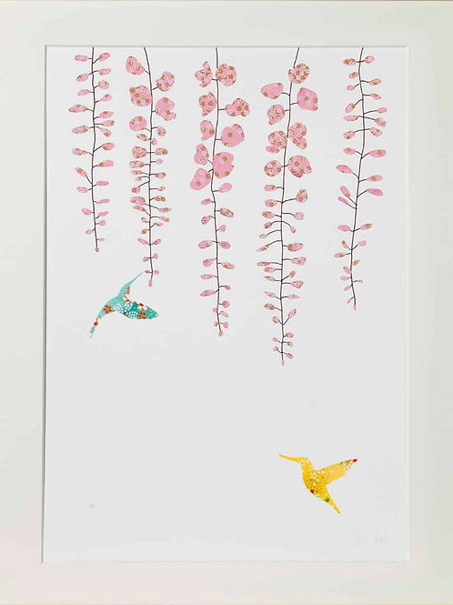 Eloise Hall A4 Mounted Print - Wisteria & Hummingbirds