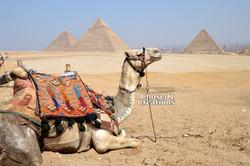 Cairo - Giza
