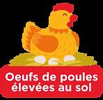 oeufs_de_poules_élevées_au_sol.png