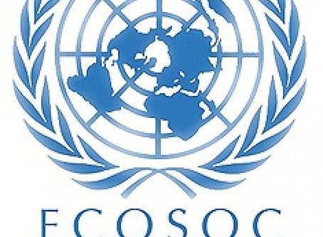 ECOSOC'tan BRM'ye Özel Danışmanlık Statüsü!