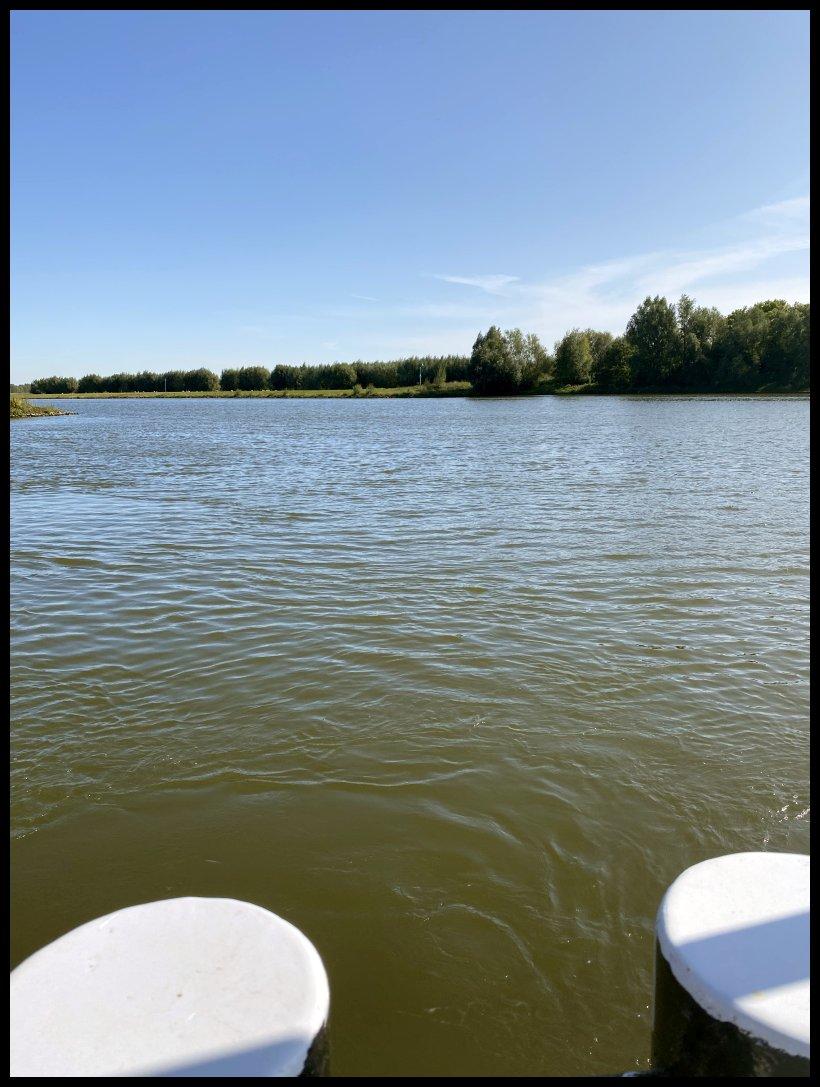 Uitzicht over de Rijn
