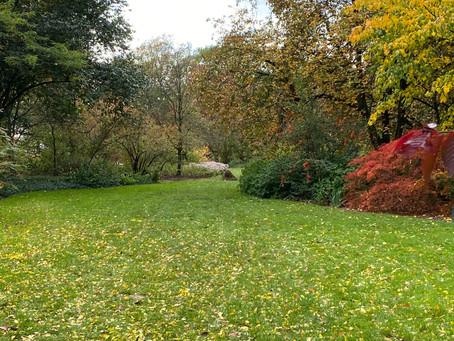 Herfst in Wageningen