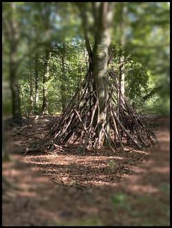 Hutje bouwen in het bos