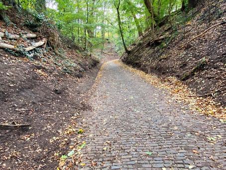 De Holleweg in Wageningen