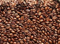 cafe haiti.jpg