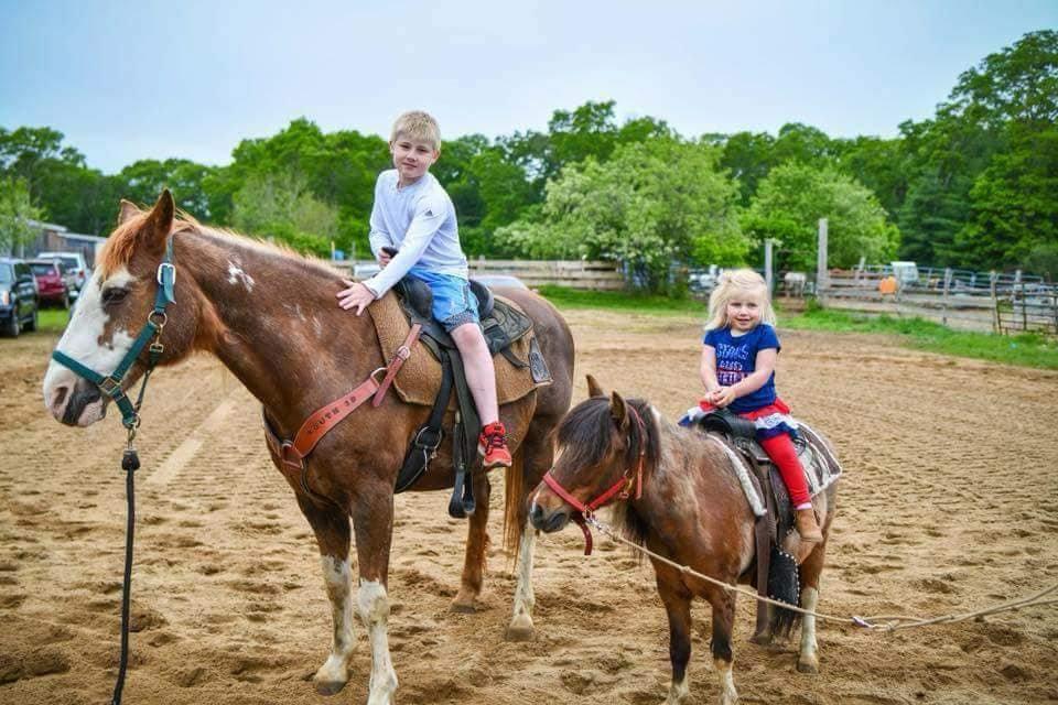 Horse or Pony Rental
