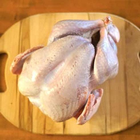 Fresh Turkey Deposit