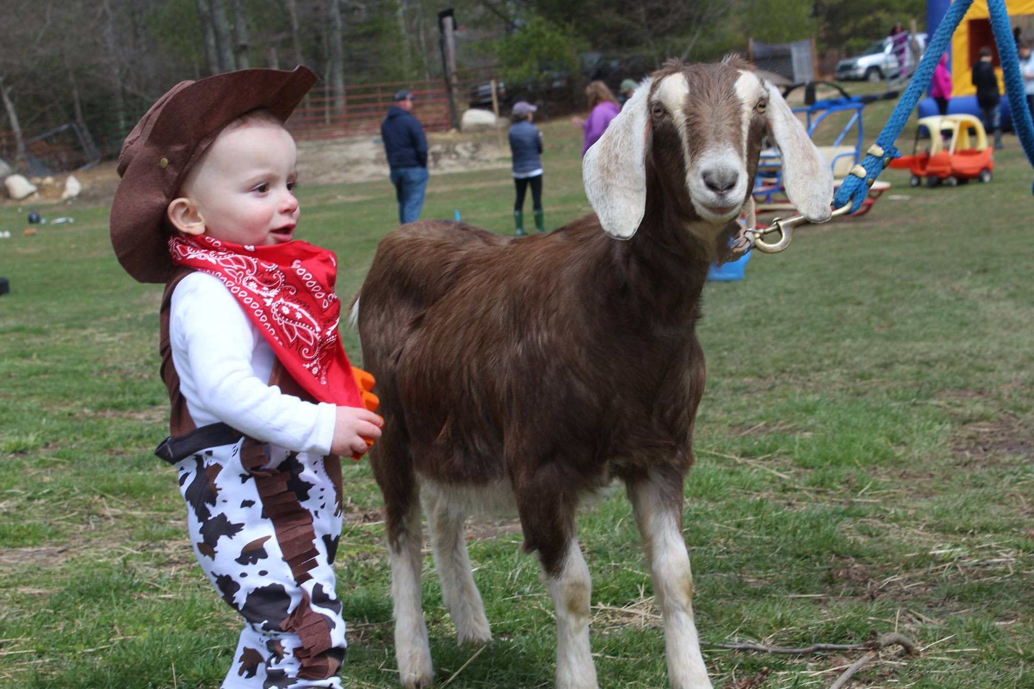 Farm Visit with Pony Rides