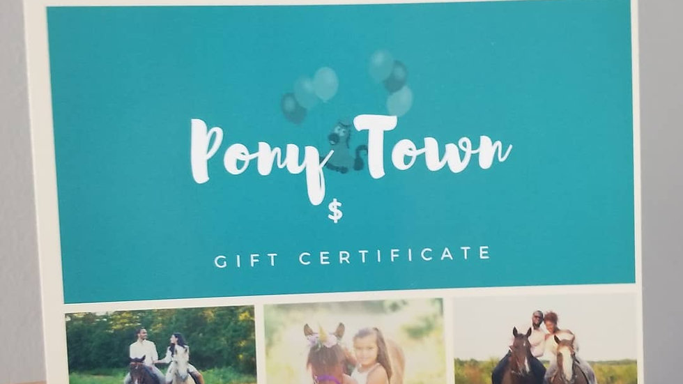 Picnic Trail Ride Gift Cert