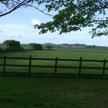 View from paddock behind Molash church