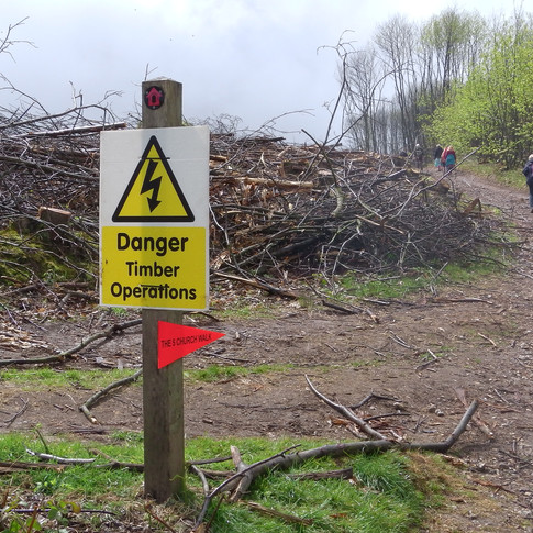 Forestry warning sign by path