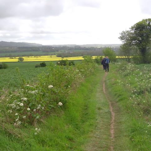 Path by field near Soakham Farm