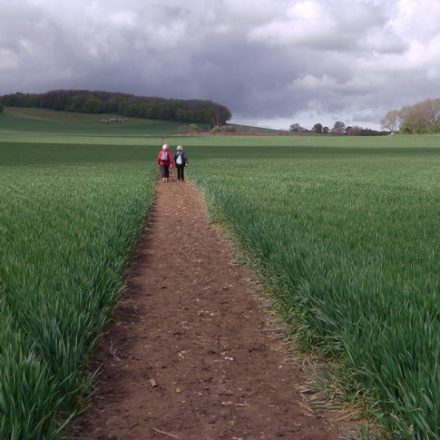 Straight path towards Challock