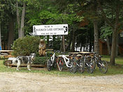 Bicycles for use