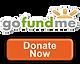 GoFundMe Campaign Donation Link