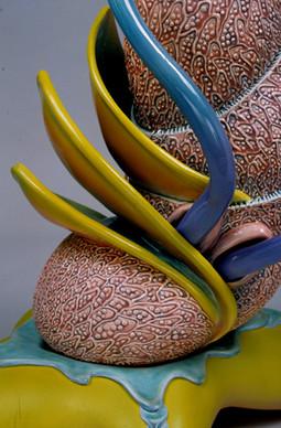 Zoophyte (detail).jpg
