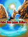 Cabo San Lucas , art gallery , paintings, painting , spray paint art , art