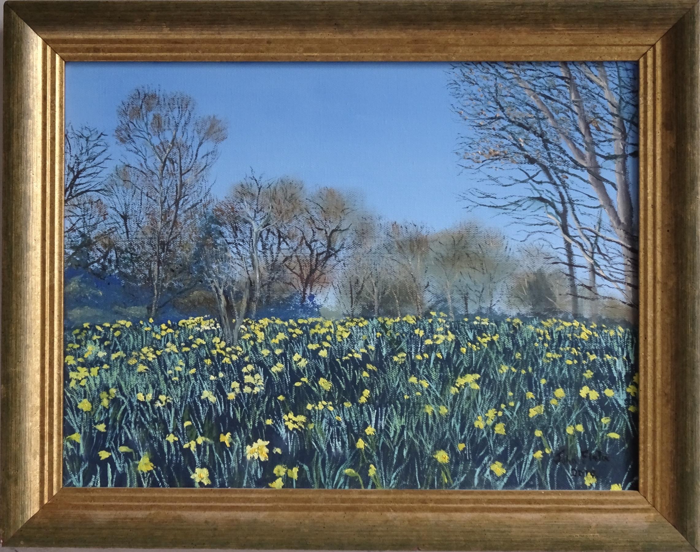 Daffodils in Cannizaro Park
