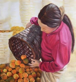 Mel Haslem Harvest
