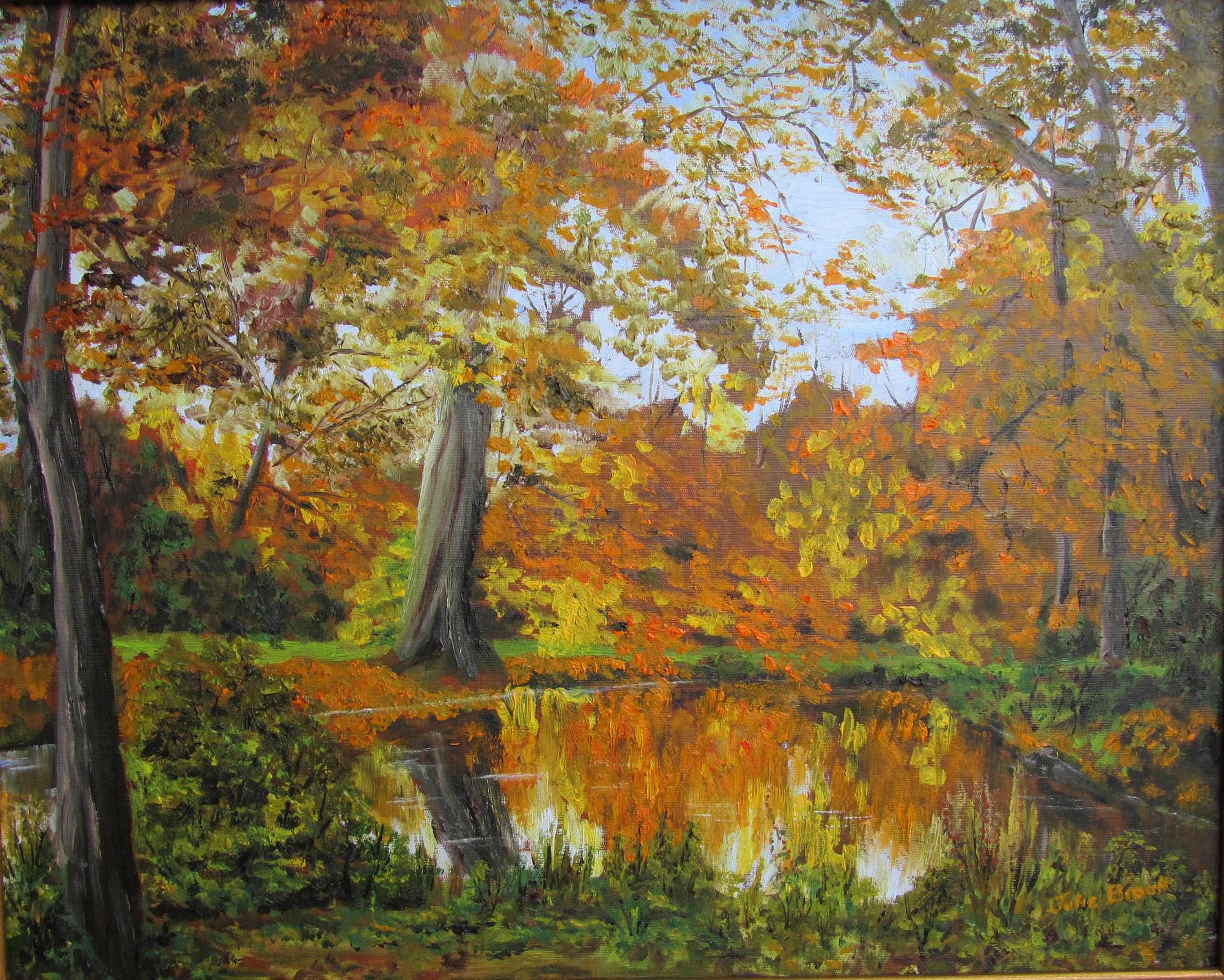 Julie Brook_ Reflections, Morden Hall Park