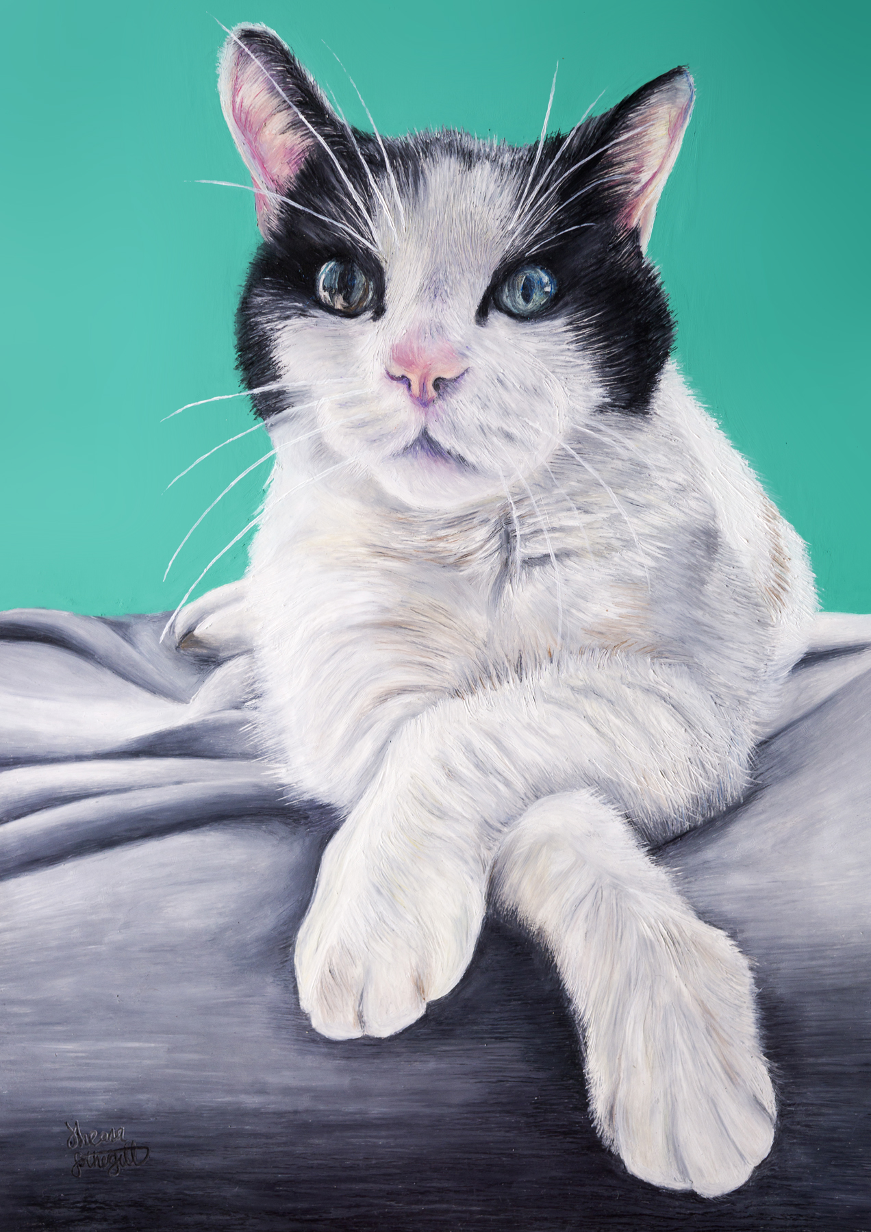 Cat Portrait Oil Pastel - Sheona Fothergill