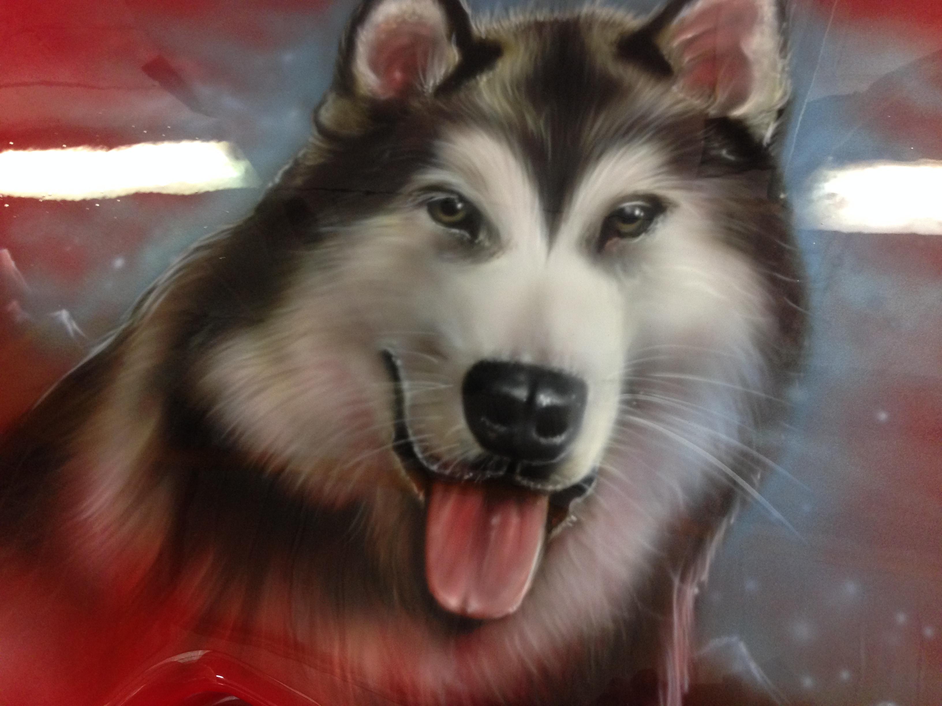 Husky dog Scott Airbrushwork