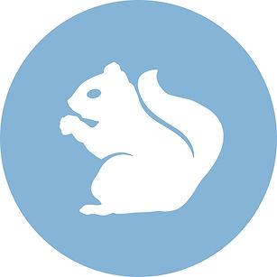 Squirrel-circle.jpg