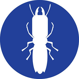 Termite-circle.jpg