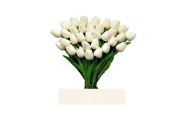 [DELUXE] Tulips, Dozen | White