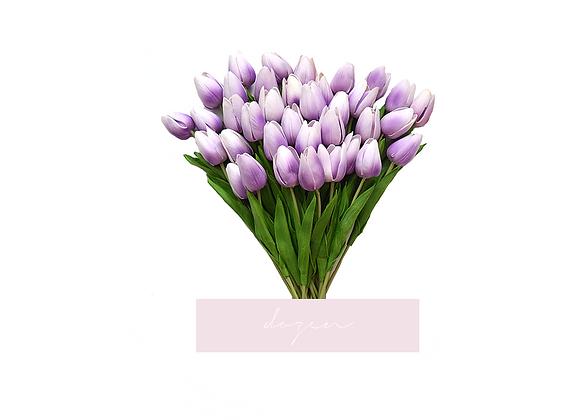 [DELUXE] Tulips, Dozen | Purple Ombre