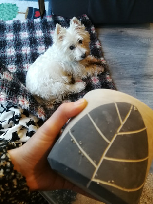 MAKA Ceramics, Studio, Dogs Fluffy - Irish Pottery