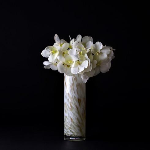 7. バンダ白+花器