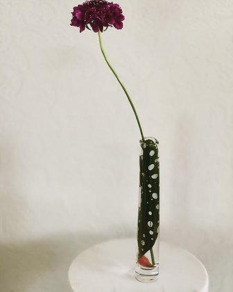 花器:SEMPRE