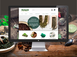 Webdesign Kassiopeia