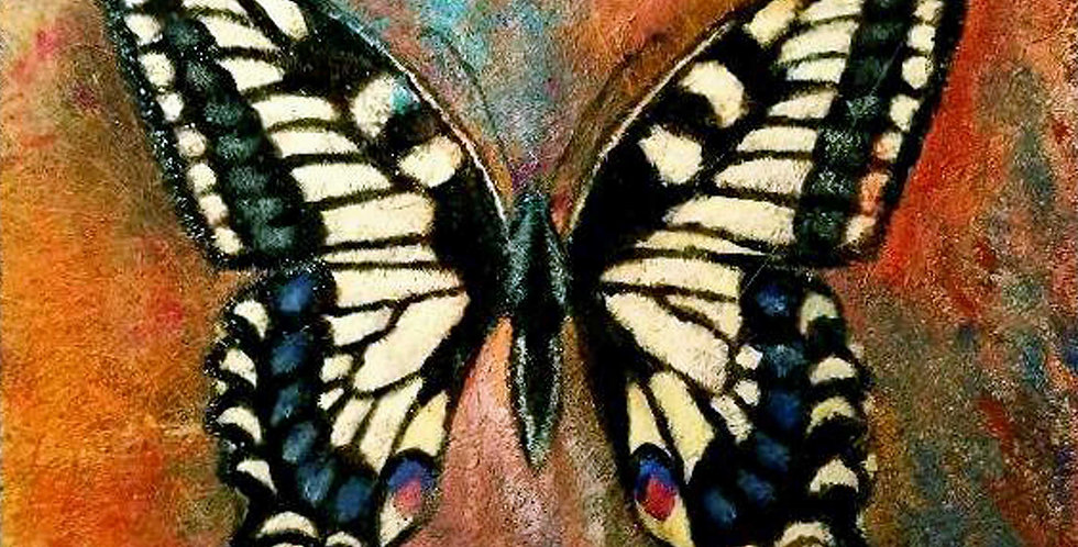Swallowtail Butterfly, Print