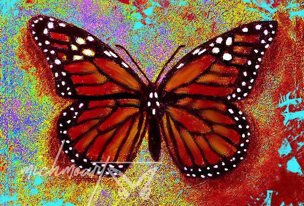 Monarch Butterfly, Enhanced, Print | MichMoArt