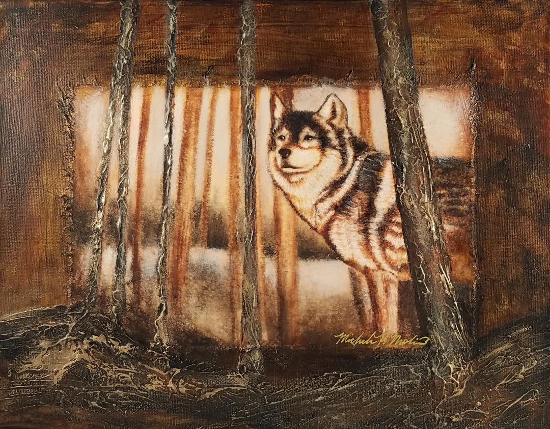 """""""Wolf in Woods"""""""