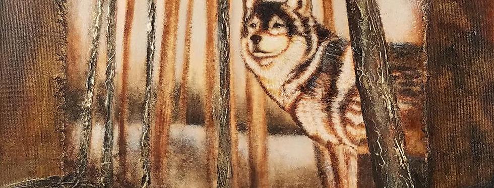 """""""Wolf in Woods"""", Print   MichMoArt"""