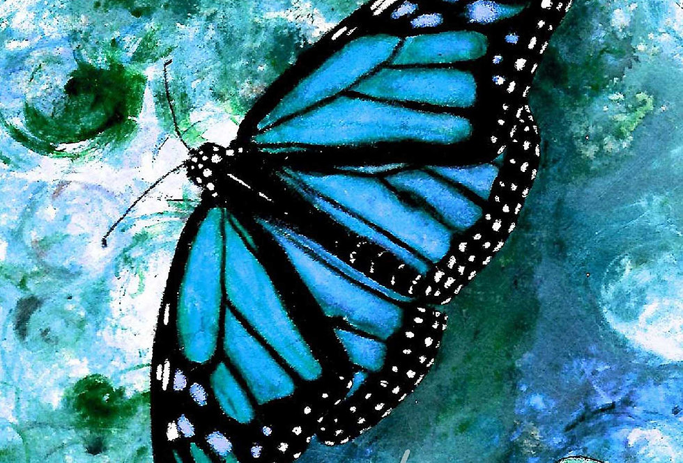Card, SINGLE BUTTERFLY CARDS-Blue/Yellow/Pink/Orange & Various Blank Note Cards