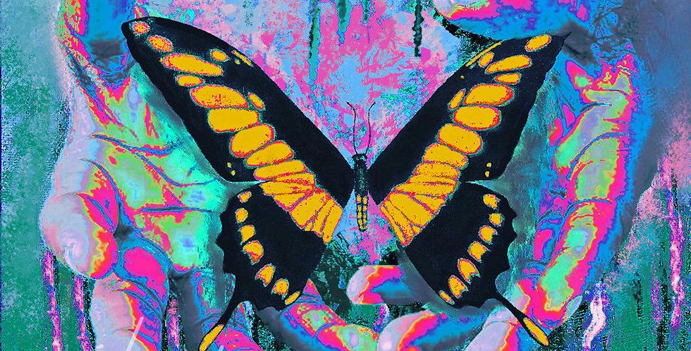 "Swallowtail Butterfly, ""Freedom is a Gift"", Print   MichMoArt"