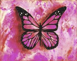 """Pink Butterfly Butterfly"""