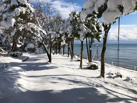 雪の中のアトリエ桃花林