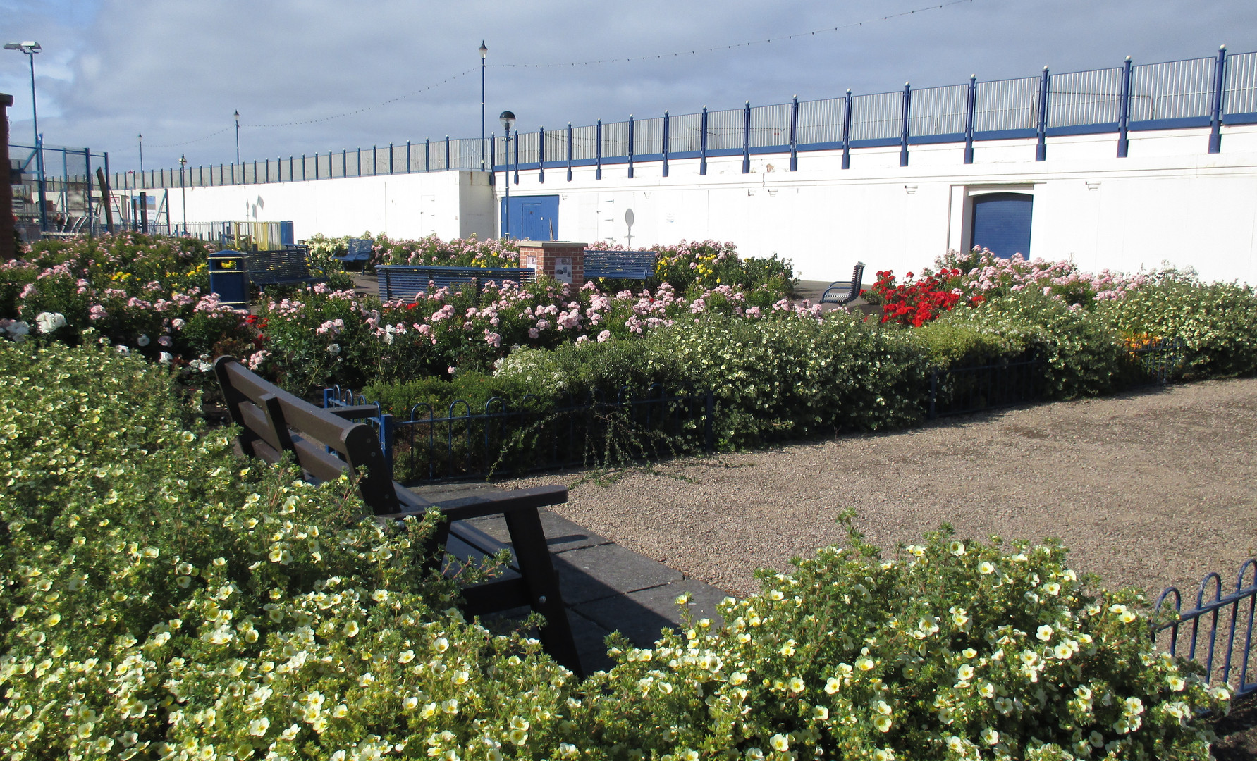 The pleasure gardens