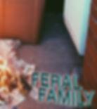 FeralFamily.jpg