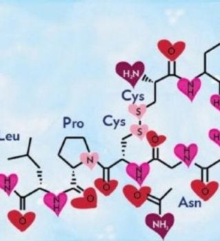 oxytocin-600x328.jpg