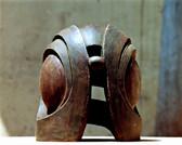 D-鸟头- 2001-03-05