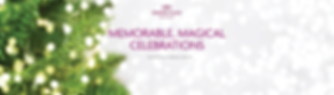CPABD_Banner Online_Christmas 2018x.png