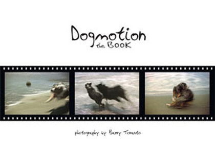Dogmotion The Book