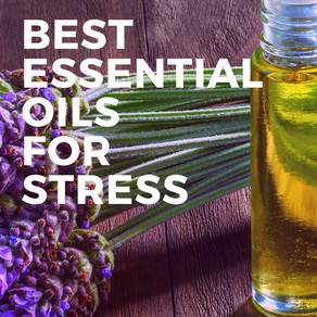 Best Essential Oils for Stress